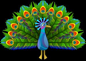 Vahvuusbongari riikinkukko rilla
